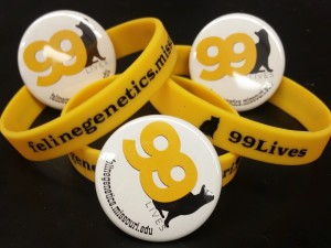 Pins and Wristbands (2)